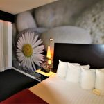 Room with a standard size bed and a daisy wallpaper in the back